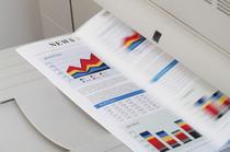 Rédaction, conception et mise en page du bilan annuel
